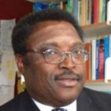 Prof Bayo Adeloye